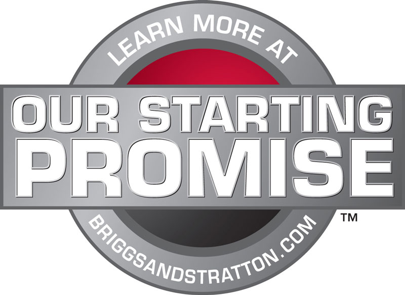 Briggs & Stratton Starting Promise