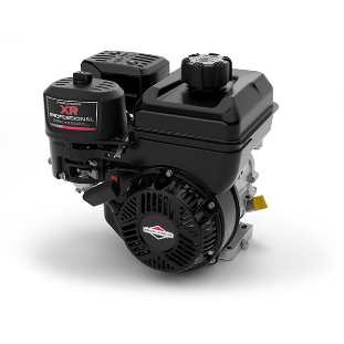 Motor 6.5hp XR Professional Series™