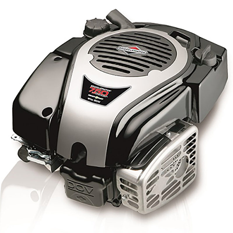 Briggs & Stratton I/C Vertical Engine