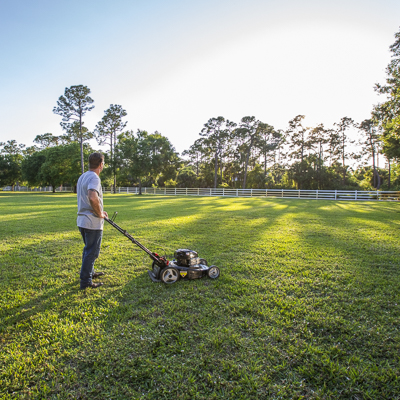 Gas-powered mowers tackle any conditions