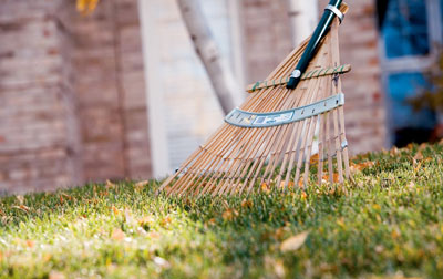 Pros And Cons For Raking Or Mulching Leaves In The Fall | Briggs & Stratton News